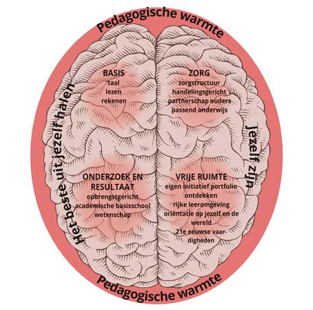 Ons 'Brein-plaatje' waarin wij laten zien dat we proberen zowel de linker- als de rechterkant aan willen spreken